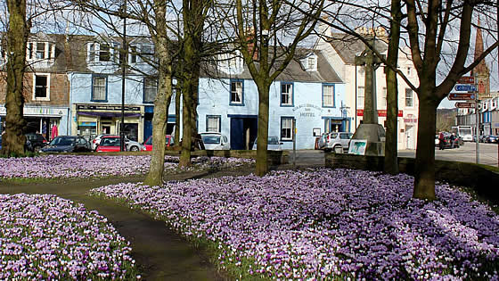 Early Spring in Kirkcudbright