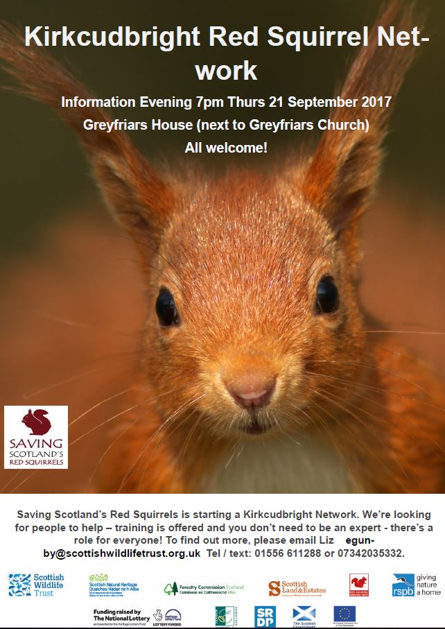 Kirkcudbright Red Squirrel Network @ Greyfriars House | Kirkcudbright | Scotland | United Kingdom