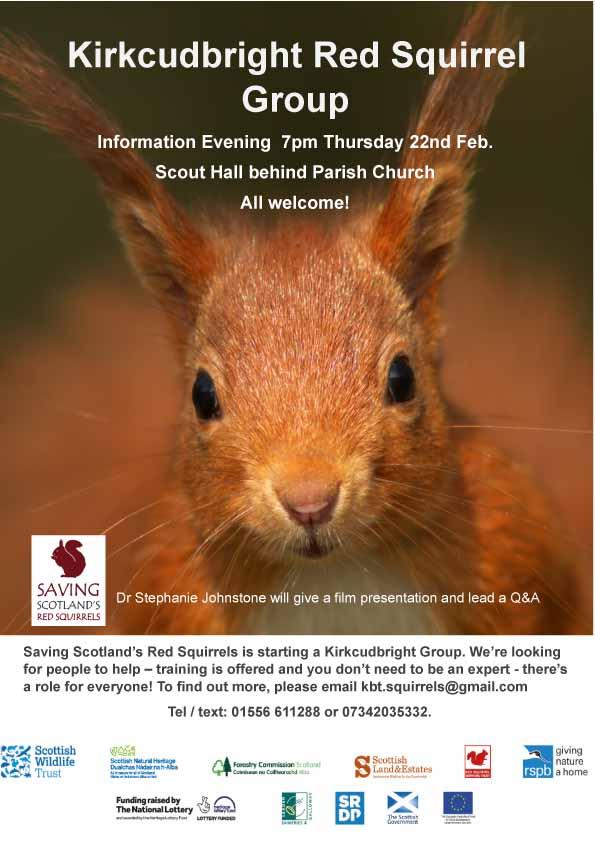 Kirkcudbright Red Squirrel Group information evening 7pm Thursday 22nd February